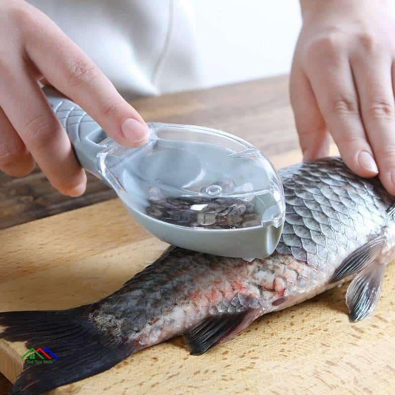 Fish Skin Brush Scraping Scale Kitchen Kitchen Slicers