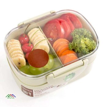 Office Picnic School Double Layer Lunch Box On Sale Kitchen Lunch Box